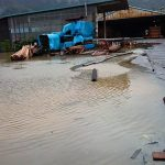 台風が通過して改めて思う家族や従業員を守るべき責任の大きさ