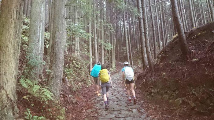 雰囲気のある石畳の山道(参道)