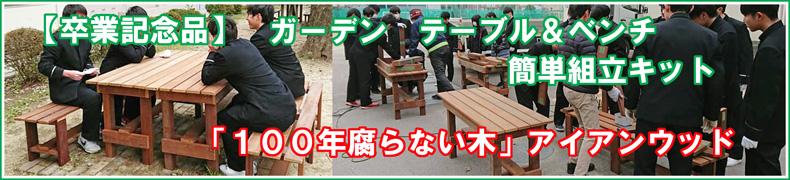 卒業記念 テーブルベンチキット